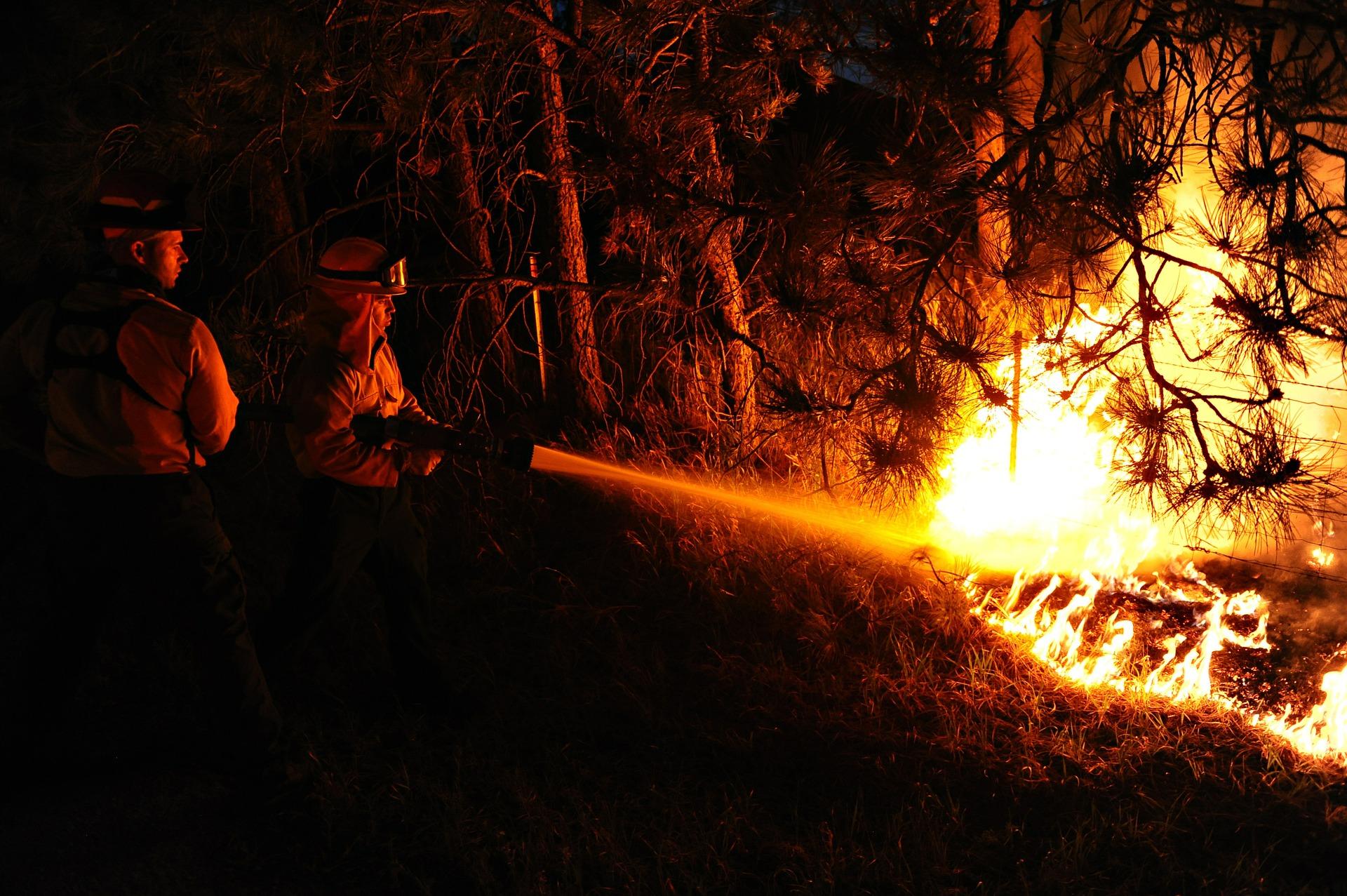 Piromane della Valsessera, Legambiente invoca l'applicazione della nuova legge sugli ecoreati