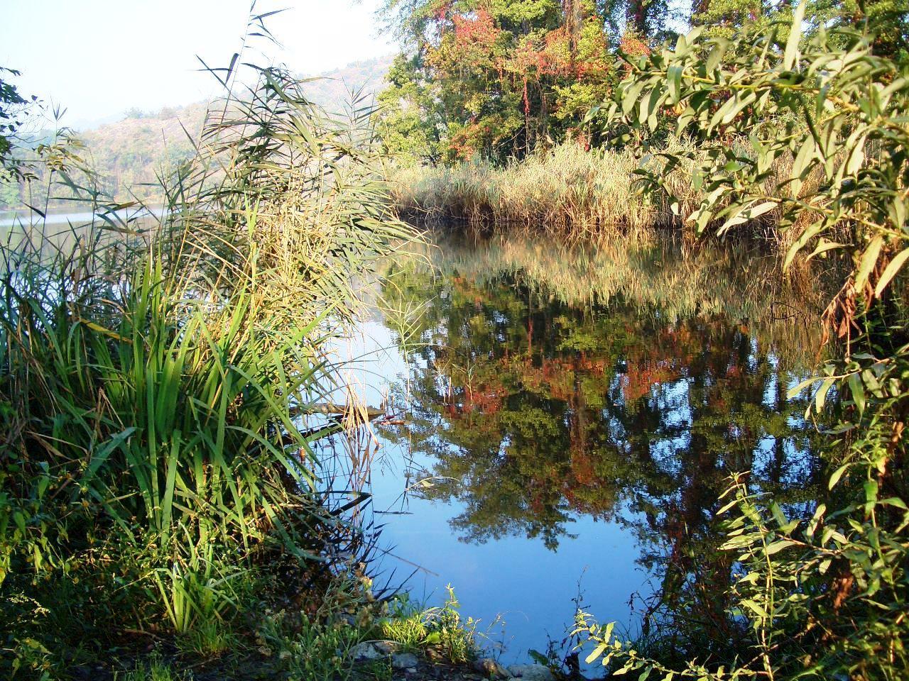 Turismo sostenibile: il meglio dei laghi piemontesi nella Guida Blu