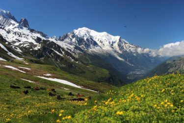 MonteBianco_montagna_neve