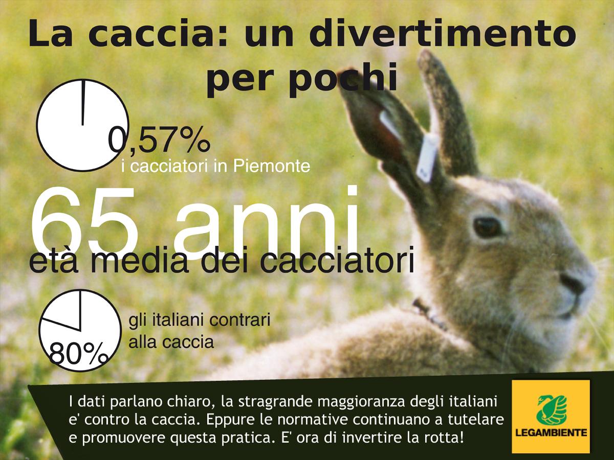 """Caccia, in Piemonte record di specie cacciabili. Legambiente: """"La Regione intervenga"""""""