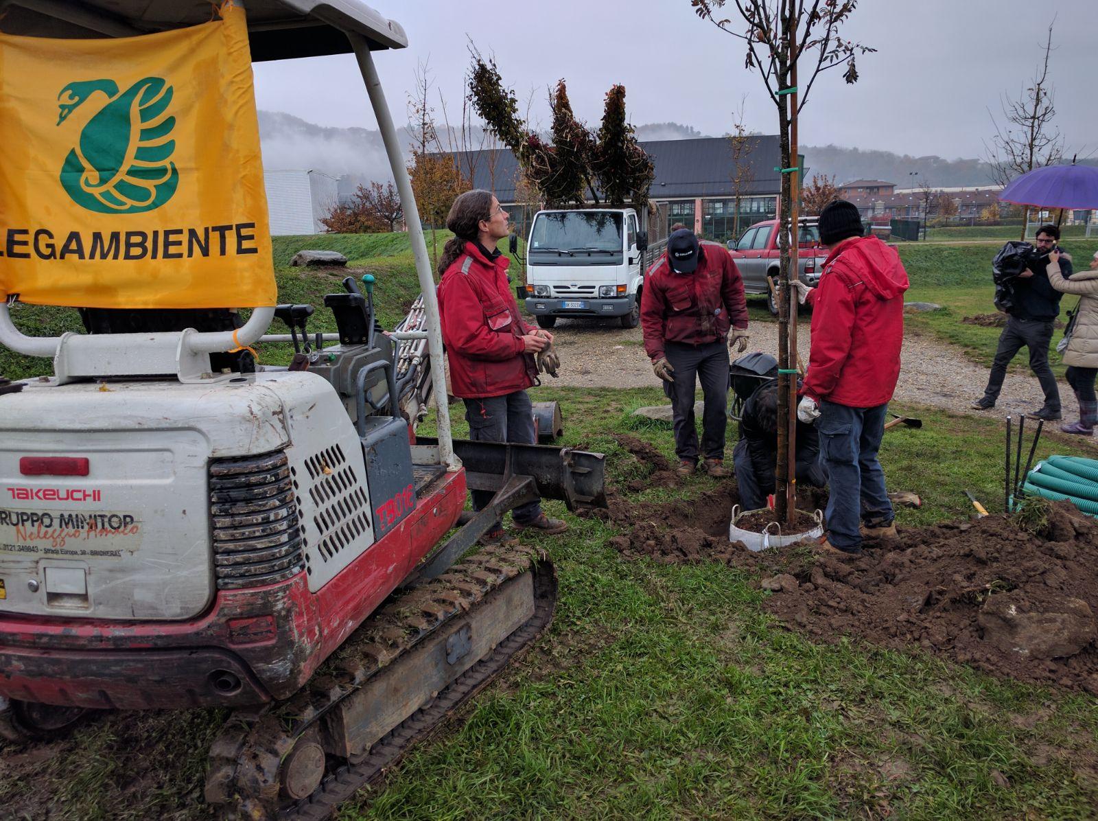 """Festa dell'Albero 2016: """"Piantiamo alberi contro il consumo di suolo"""""""